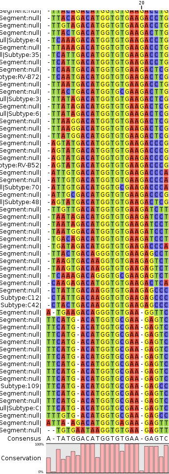 enterovirus_align_a